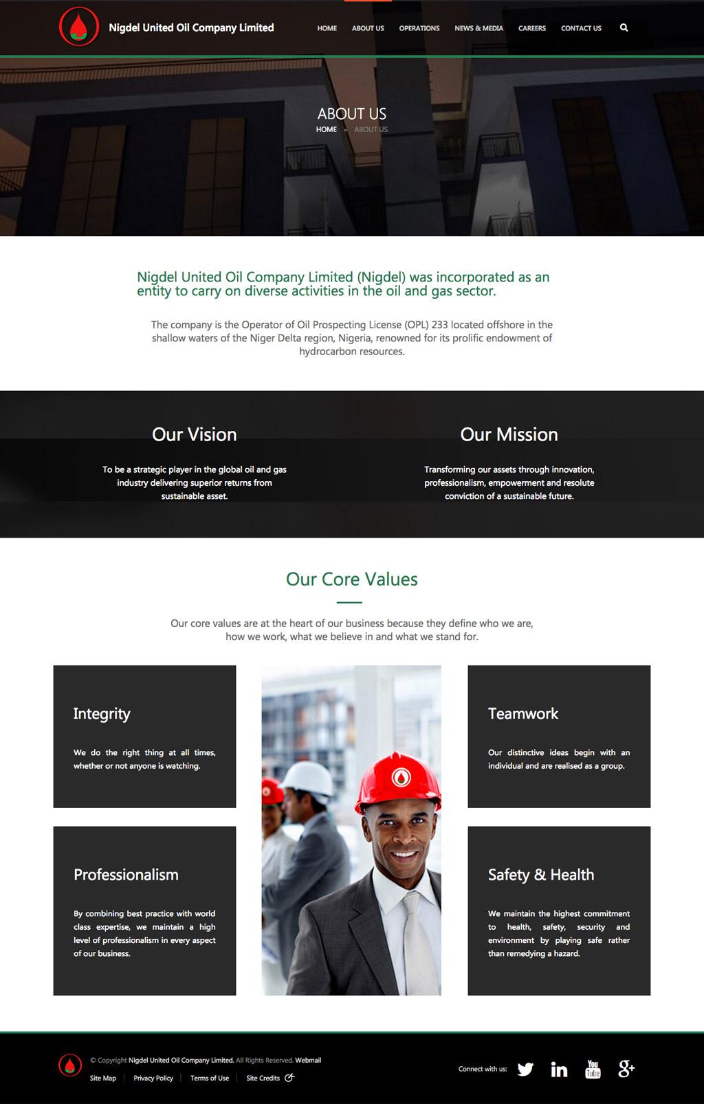 nigdel-website-development-large2