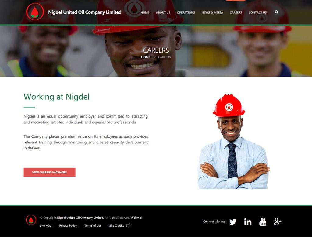 nigdel-website-development-large3