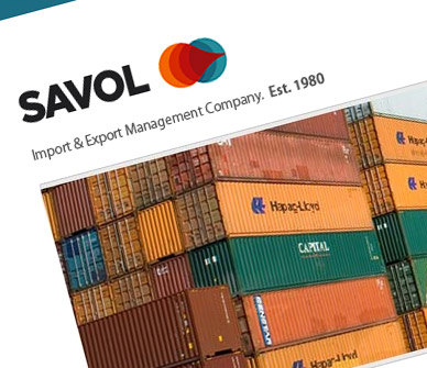 savol-west-africa-website-designer